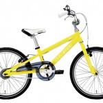 e29885lgs-j20_yellow